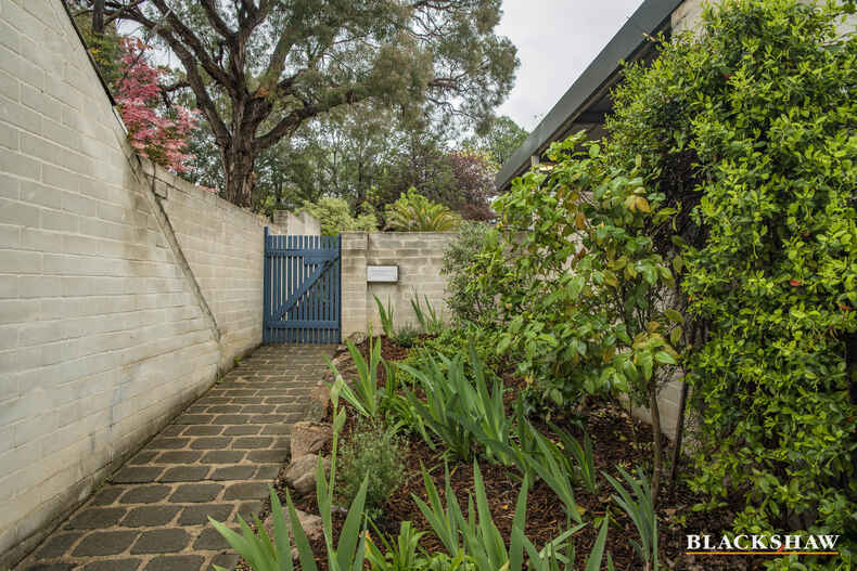 61 MacLachlan Street Holder