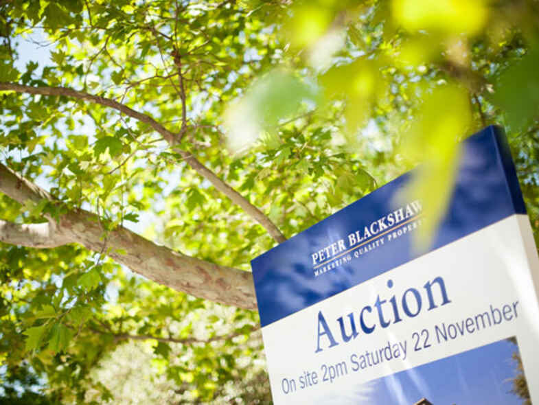 Auction Day - Our Experience Creates Your Experience